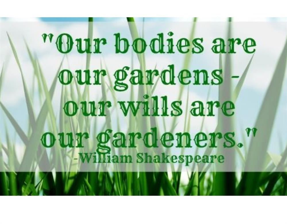 quote by William Shakespeare: Our Bodies are our gardens - our wills are our gardeners.